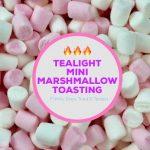 Tealight Mini Marshmallow Toasting