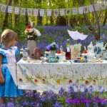 Through The Looking Glass Picnic
