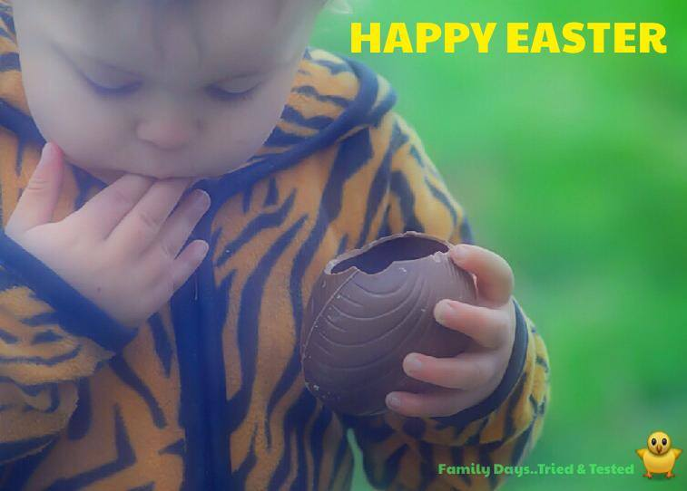 Easter & Spring Ideas - eat chocolate