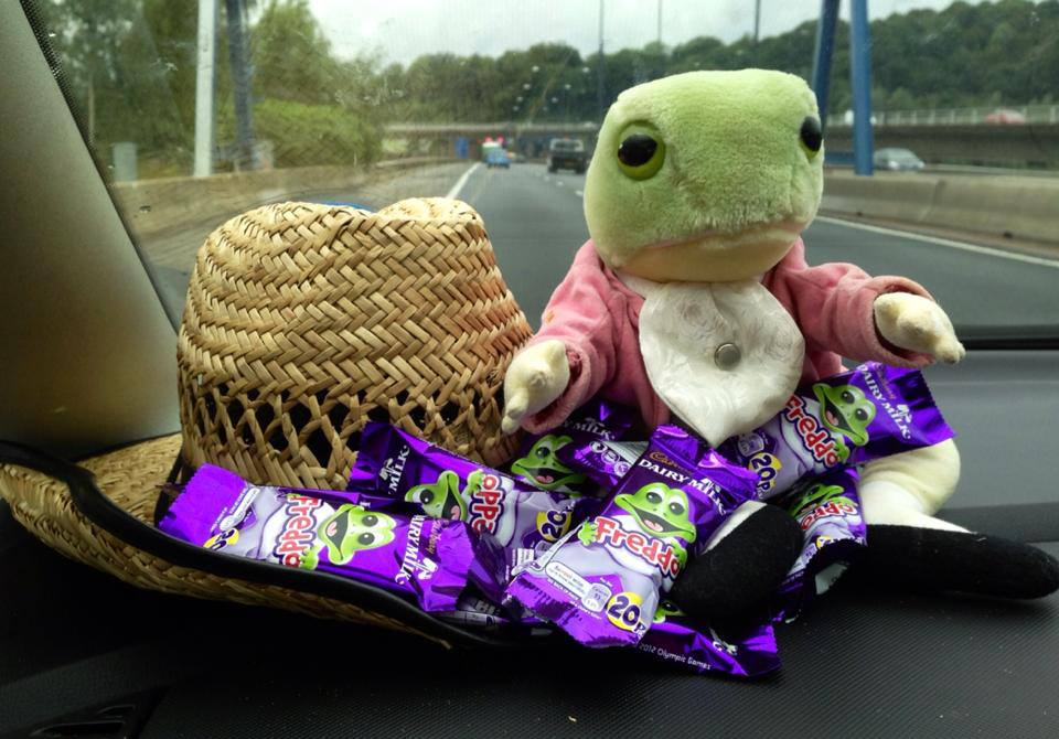 Easter & Spring Ideas - chocolate frogs