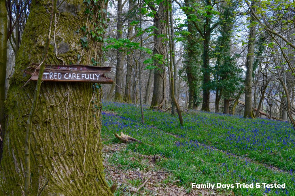 Creating A Fairy Kingdom In The Bluebell Wood