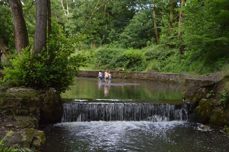 Forest of Dean Picnic Spots - Cannop Ponds