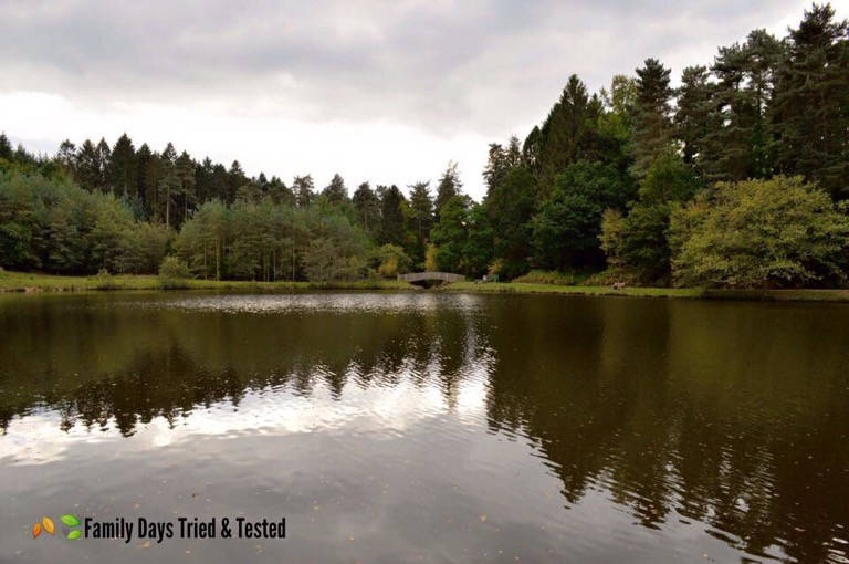 Forest of Dean Picnic Spots - Mallards Pike
