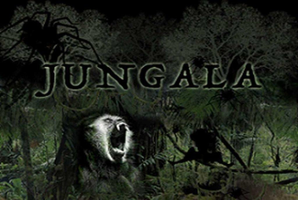 jungala-escape-room2