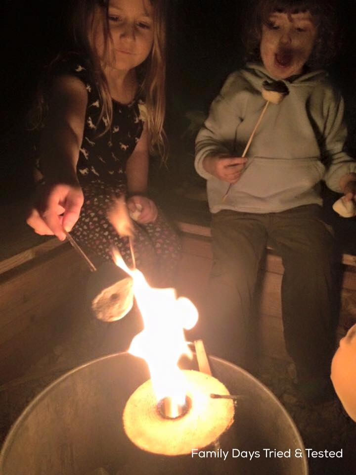 Friday night family fun ideas - toast marshmallows in the garden
