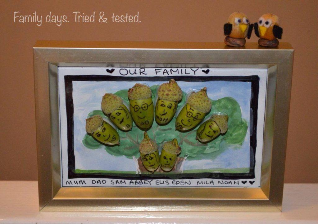 family acorns