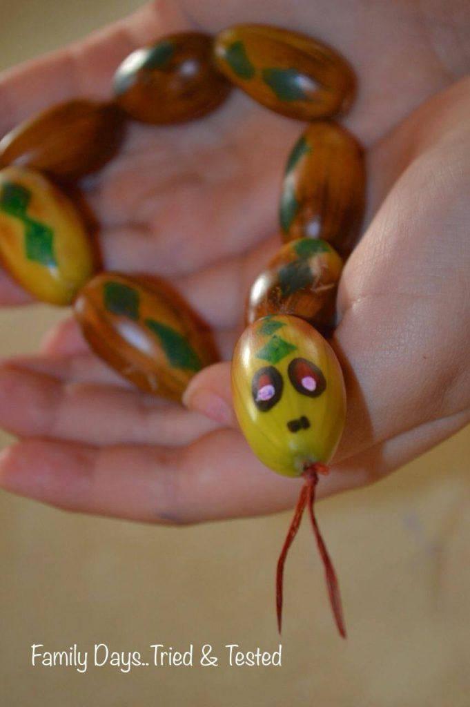 acorn snakes