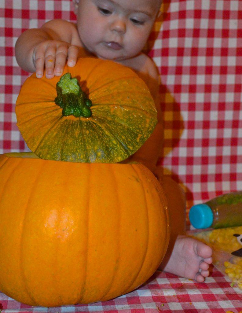Boo's Basket - Exploring Vegetables