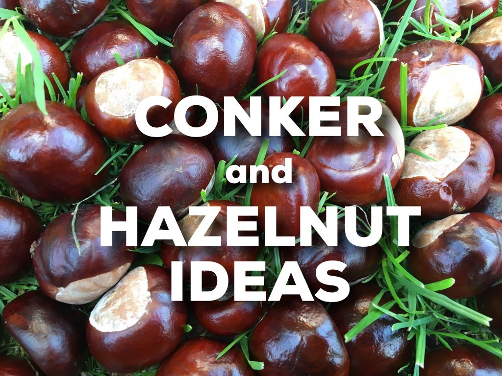 conkers and hazelnut ideas