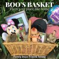 Boo's Basket - A Reminder of Home