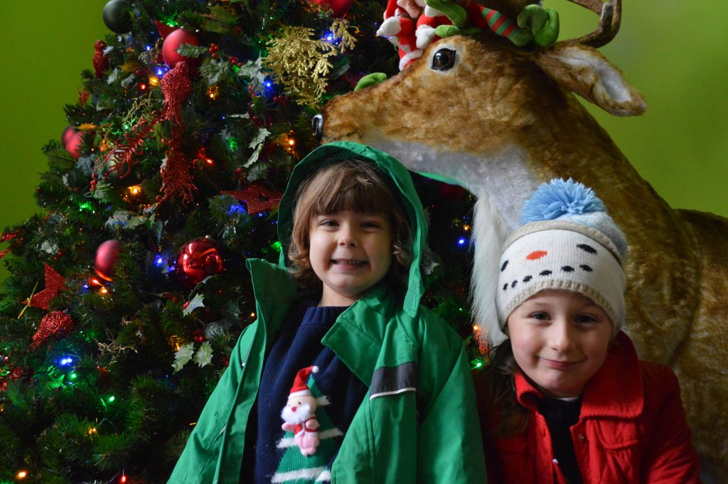 The Magic of Christmas at Bluestone