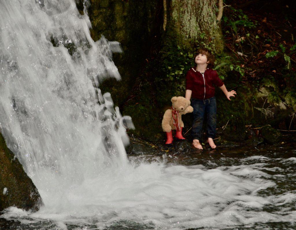 Honey Bear Finds A Waterfall