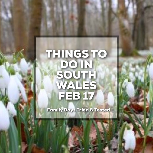 Things To Do In South Wales During Feb 2017 Half Term