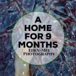 A Home For Nine Months – Life Through A Lens