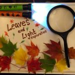 Exploring Autumn Leaves With Light