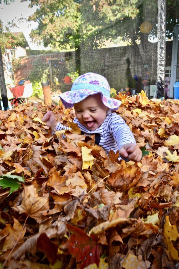 autumn leaves trampolining