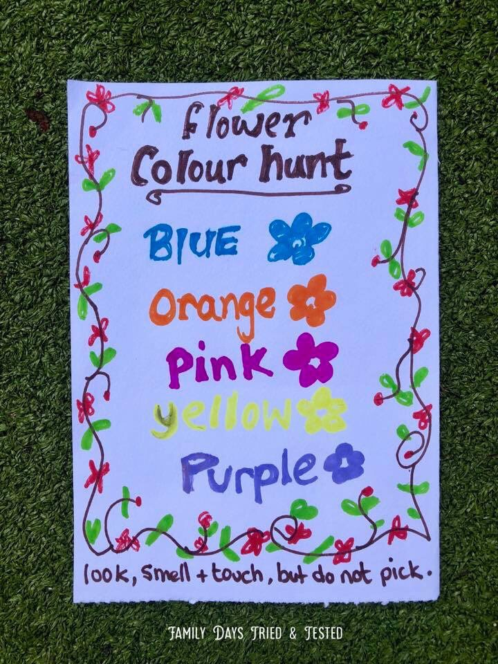 Flower Colour Hunt