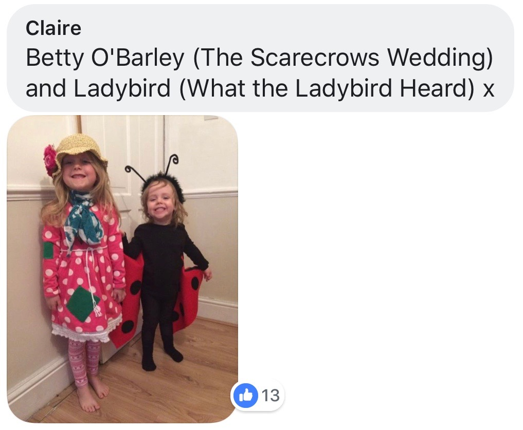 World Book Day costume ideas - What the Ladybird Heard