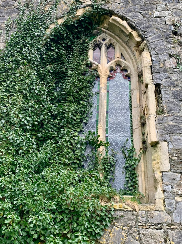 Windows Of Holly House
