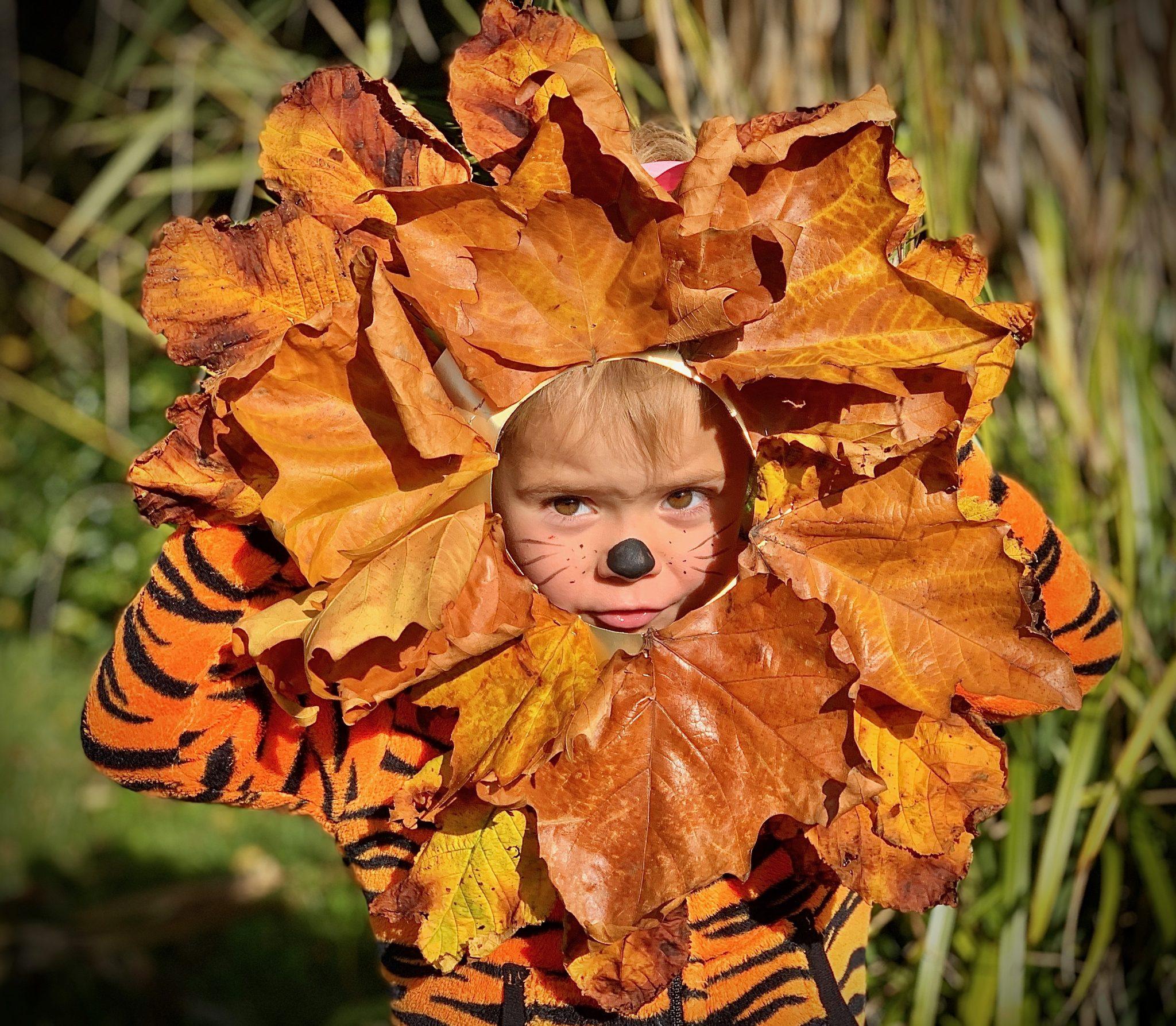 Leaf Lions